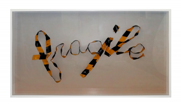 fragile - 48.75 x 26.75 x 3in - Protein resin, pigment, metal pins, archival inkjet print on fabric