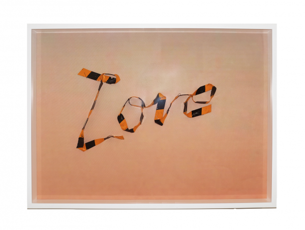 love - 24.25 x 18.75 x 2.5 in - Protein resin, pigment, metal pins, archival inket print on fabric