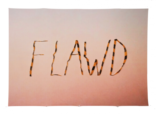 Flawd - 35 x 24.5 x .75 in Unframed - Protein resin, metal pins, archival inkjet print on fabric