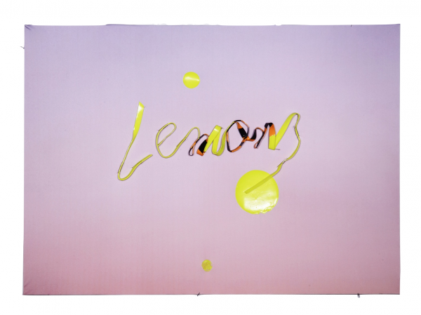 Lemons - 35 x 25 x .75 in - Unframed - Protein resin, metal pins, archival inkjet print on fabric