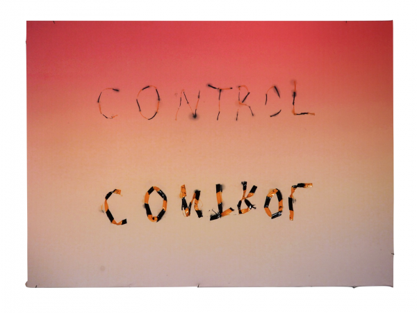 Control - 35 x 25 x .25 in Unframed - Protein resin, archival inkjet print on fabric