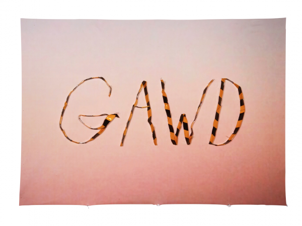 Gawd - 35 x 24.5 x .75 in Unframed - Protein resin, metal pins, archival inkjet print on fabric