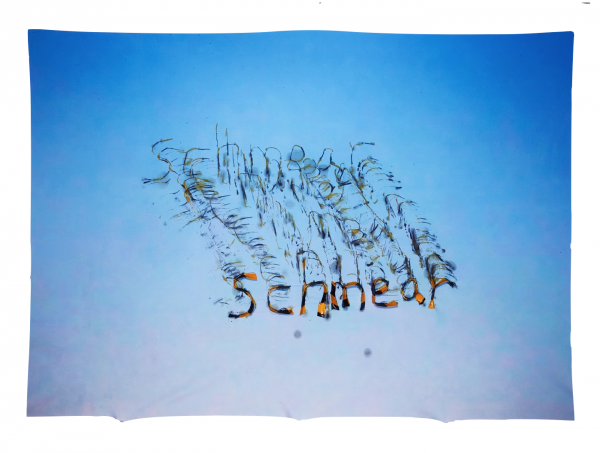 Schmear - 48 x 35 x .5 in Unframed - Protein resin, archival inkjet print on fabric