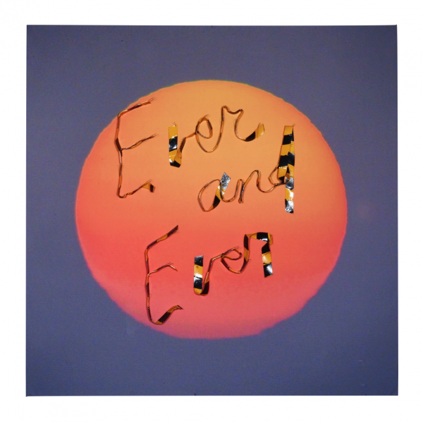 Ever and Ever - 32.5 x 32.5 x 1 in Unframed - Protein resin, metal pins, archival inkjet print on fabric
