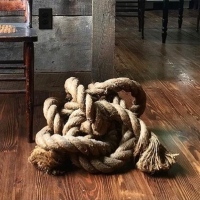 Naked Knot 30in x 27 in 13in